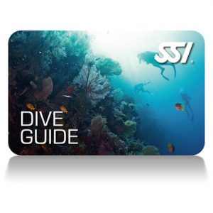 Professionell Dive Gide, Dive Master, Assistent Instructor